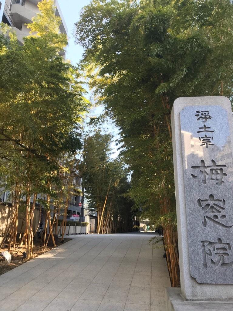 梅窓院と竹