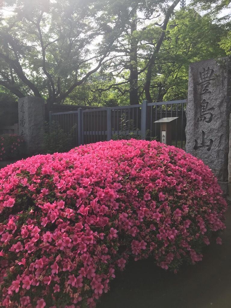 道場寺入口